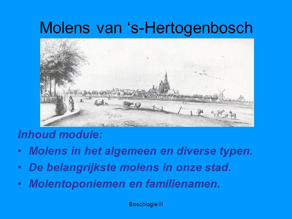 Boschlogie III Molens van 's-Hertogenbosch Inhoud module: Molens in het algemeen en diverse typen.