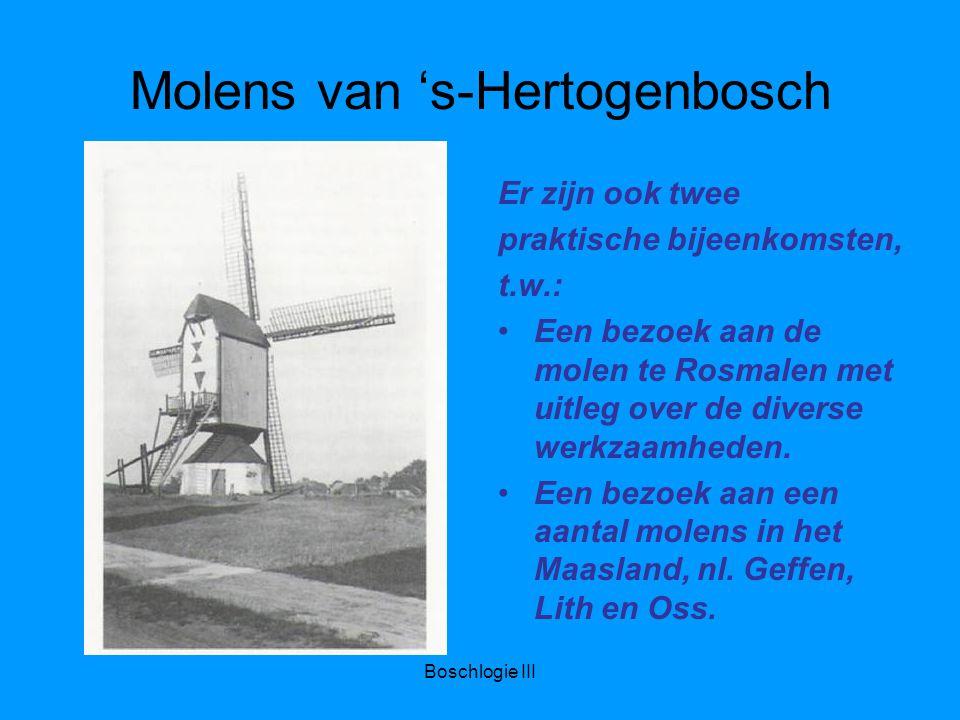 Boschlogie III Molens van 's-Hertogenbosch Er zijn ook twee praktische bijeenkomsten, t.w.: Een bezoek aan de molen te Rosmalen met uitleg over de diverse werkzaamheden.