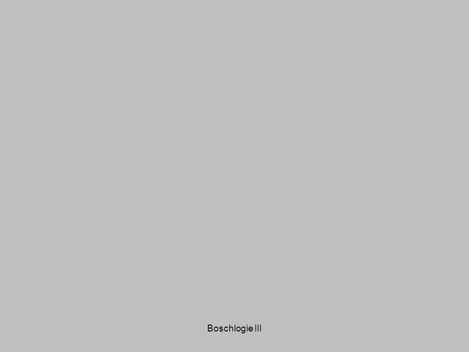 Boschlogie III