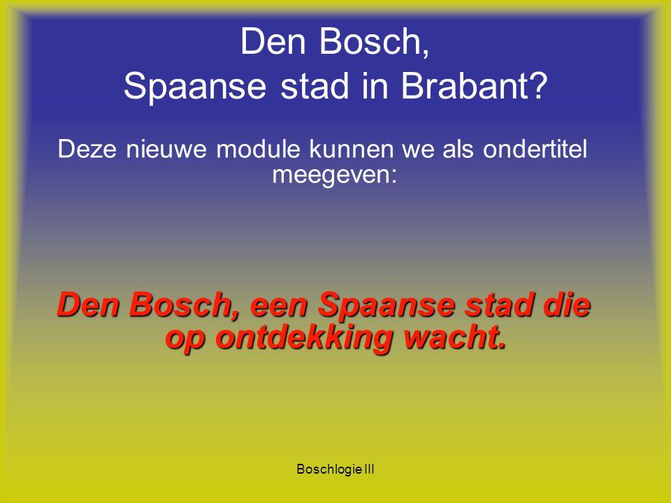 Boschlogie III Den Bosch, Spaanse stad in Brabant? Deze nieuwe module kunnen we als ondertitel meegeven: Den Bosch, een Spaanse stad die op ontdekking