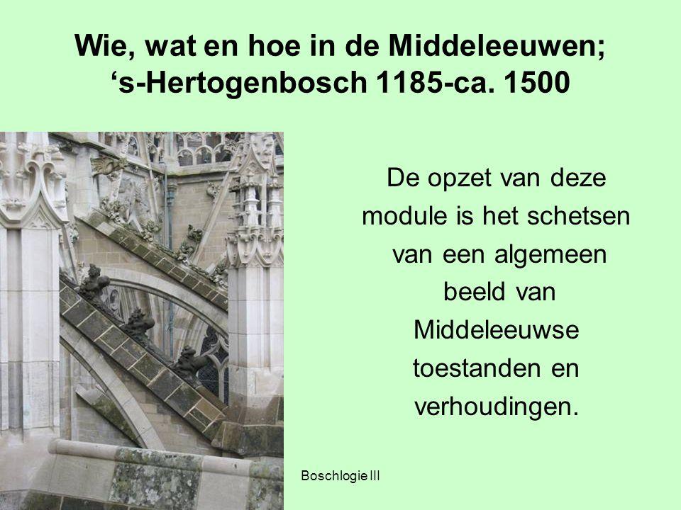 Boschlogie III Wie, wat en hoe in de Middeleeuwen; 's-Hertogenbosch 1185-ca. 1500 De opzet van deze module is het schetsen van een algemeen beeld van