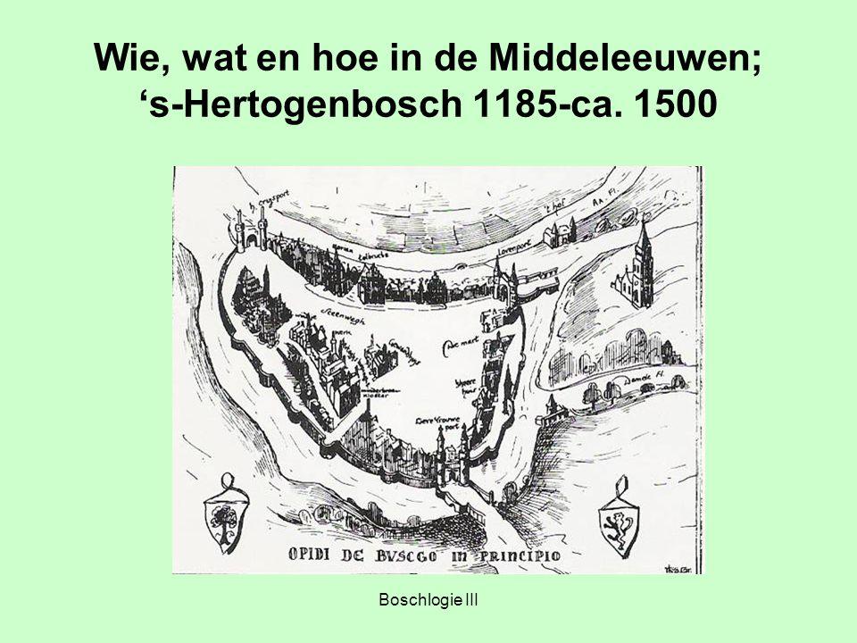 Boschlogie III Wie, wat en hoe in de Middeleeuwen; 's-Hertogenbosch 1185-ca. 1500