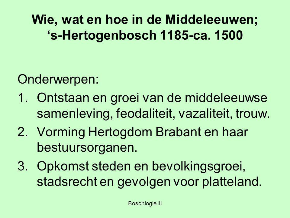 Boschlogie III Wie, wat en hoe in de Middeleeuwen; 's-Hertogenbosch 1185-ca. 1500 Onderwerpen: 1.Ontstaan en groei van de middeleeuwse samenleving, fe