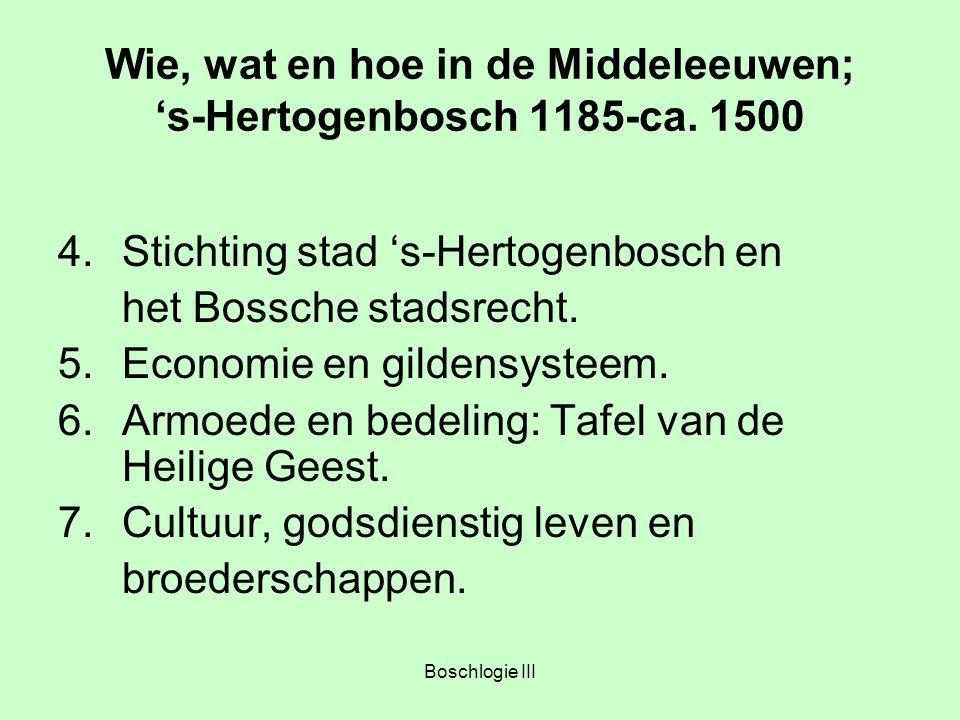 Boschlogie III Wie, wat en hoe in de Middeleeuwen; 's-Hertogenbosch 1185-ca. 1500 4.Stichting stad 's-Hertogenbosch en het Bossche stadsrecht. 5.Econo