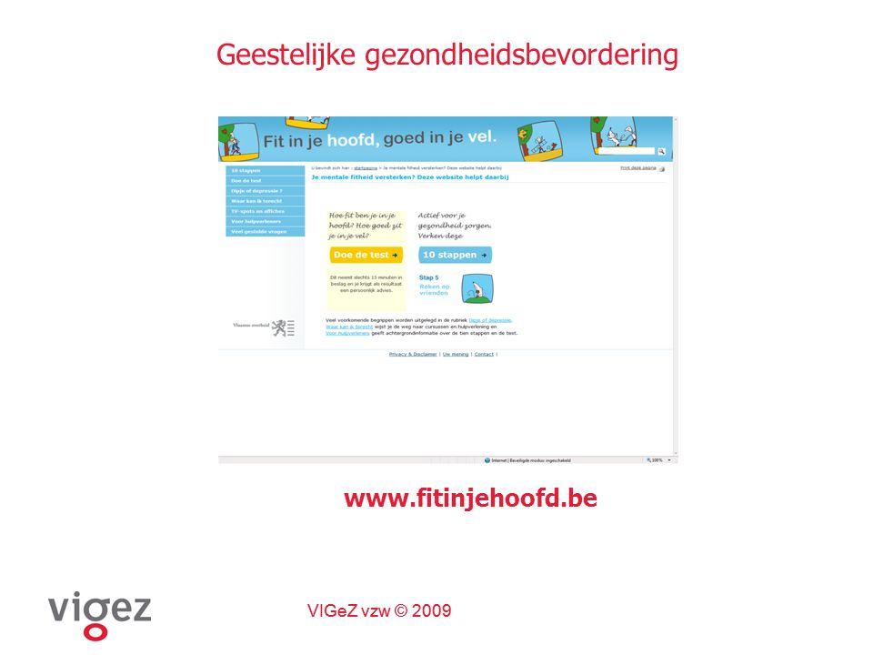 VIGeZ vzw © 2009 Geestelijke gezondheidsbevordering www.fitinjehoofd.be