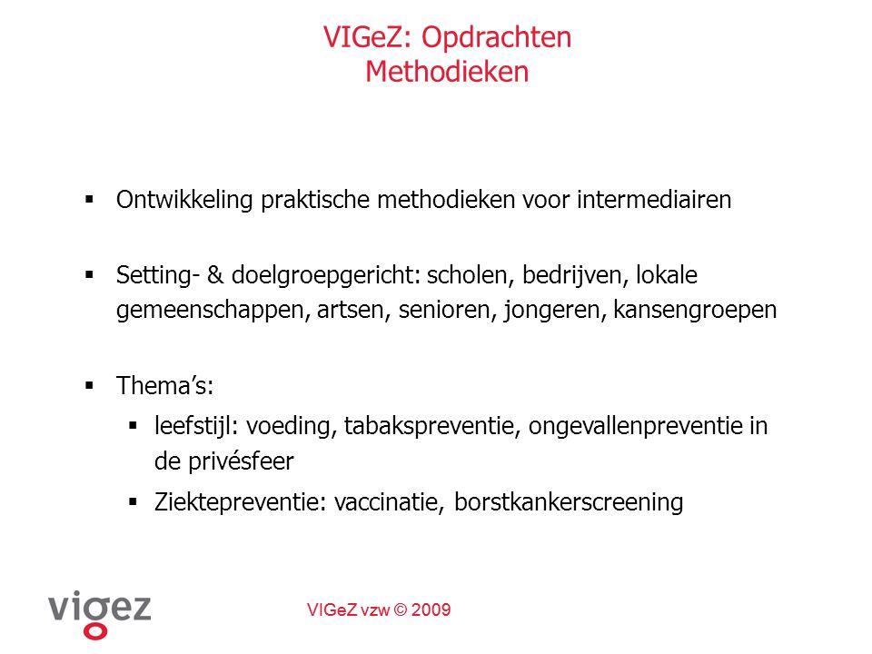 VIGeZ vzw © 2009 Huisartsen Ondersteunen Logo's bij het werken met zorgverleners en huisartsen
