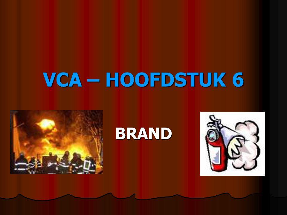 VCA – HOOFDSTUK 6 BRAND
