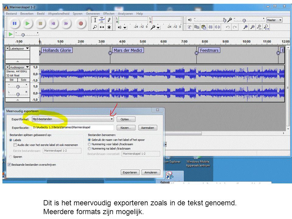 Dit is het meervoudig exporteren zoals in de tekst genoemd. Meerdere formats zijn mogelijk.