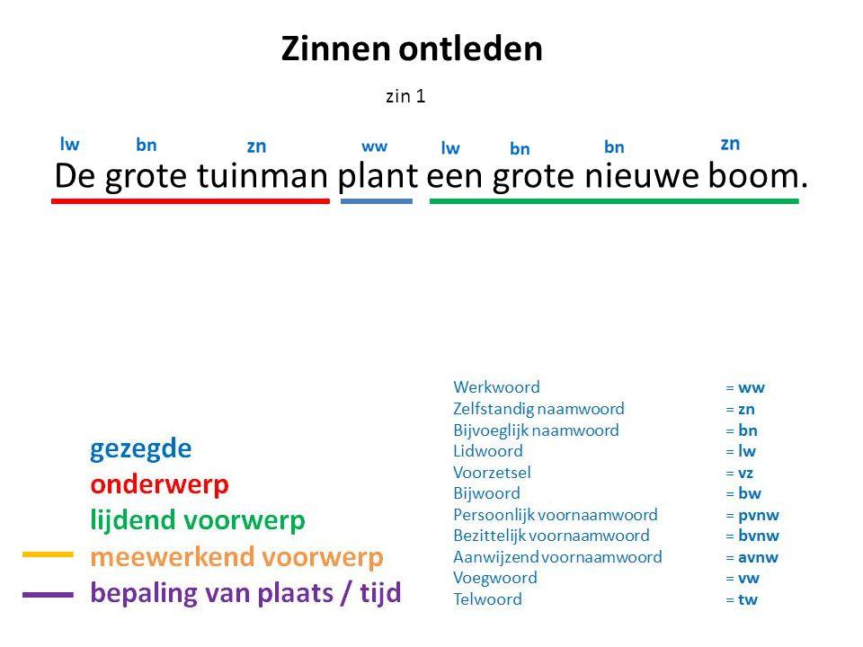 De grote tuinman plant een grote nieuwe boom. zin 1 Zinnen ontleden