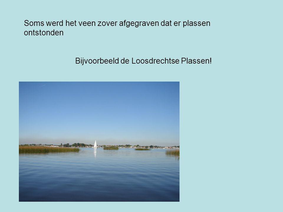 Soms werd het veen zover afgegraven dat er plassen ontstonden Bijvoorbeeld de Loosdrechtse Plassen!