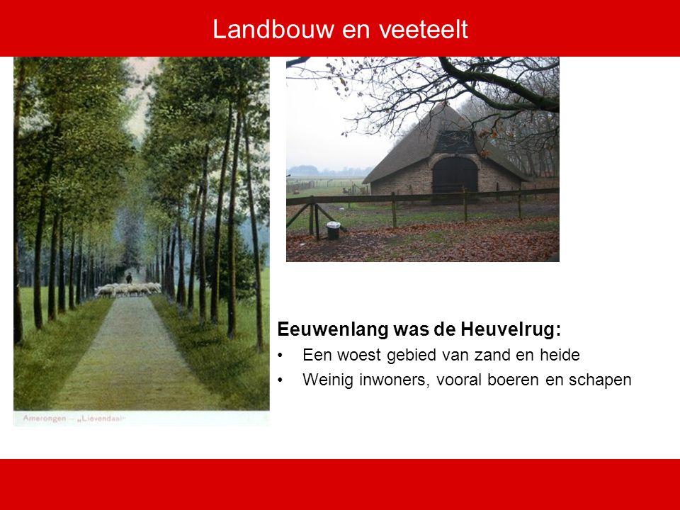 Landbouw en veeteelt Eeuwenlang was de Heuvelrug: Een woest gebied van zand en heide Weinig inwoners, vooral boeren en schapen
