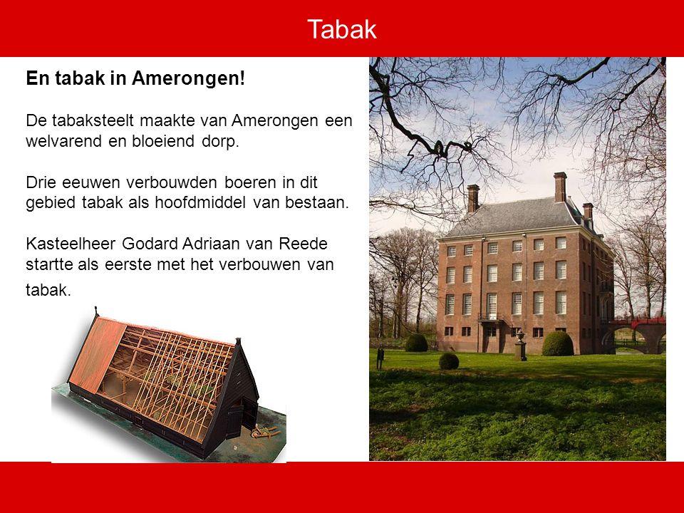 Tabak En tabak in Amerongen. De tabaksteelt maakte van Amerongen een welvarend en bloeiend dorp.