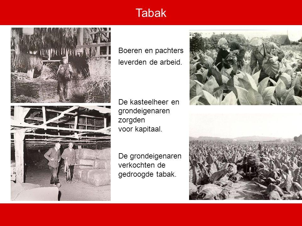 Tabak Boeren en pachters leverden de arbeid.