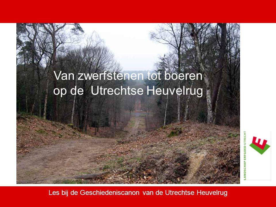 Les bij de Geschiedeniscanon van de Utrechtse Heuvelrug Van zwerfstenen tot boeren op de Utrechtse Heuvelrug
