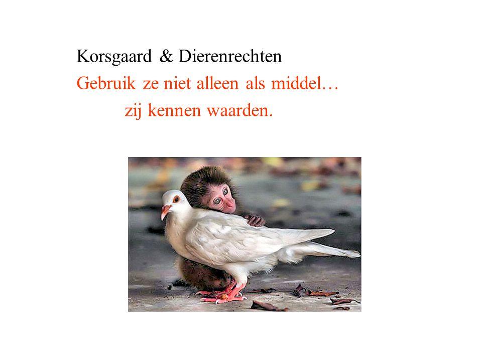 Korsgaard & Dierenrechten Gebruik ze niet alleen als middel… zij kennen waarden.