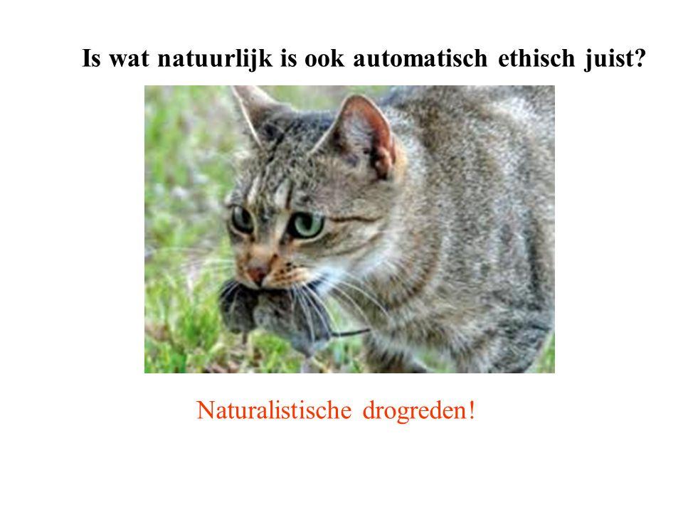 Is wat natuurlijk is ook automatisch ethisch juist? Naturalistische drogreden!