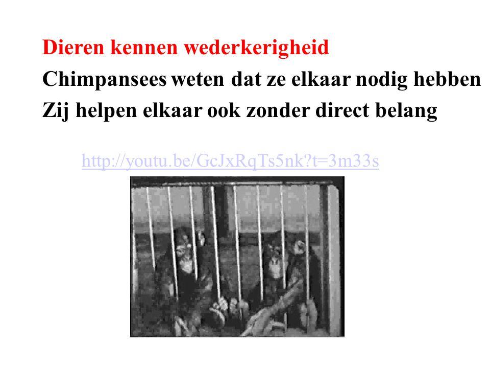 http://youtu.be/GcJxRqTs5nk?t=3m33s Dieren kennen wederkerigheid Chimpansees weten dat ze elkaar nodig hebben Zij helpen elkaar ook zonder direct bela