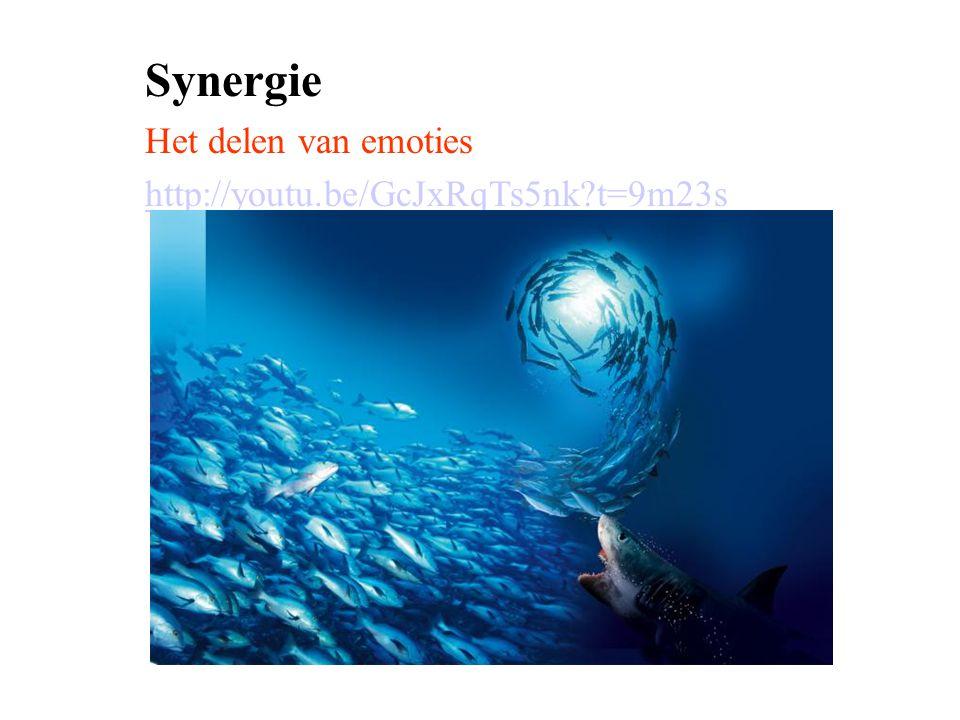 Synergie Het delen van emoties http://youtu.be/GcJxRqTs5nk?t=9m23s