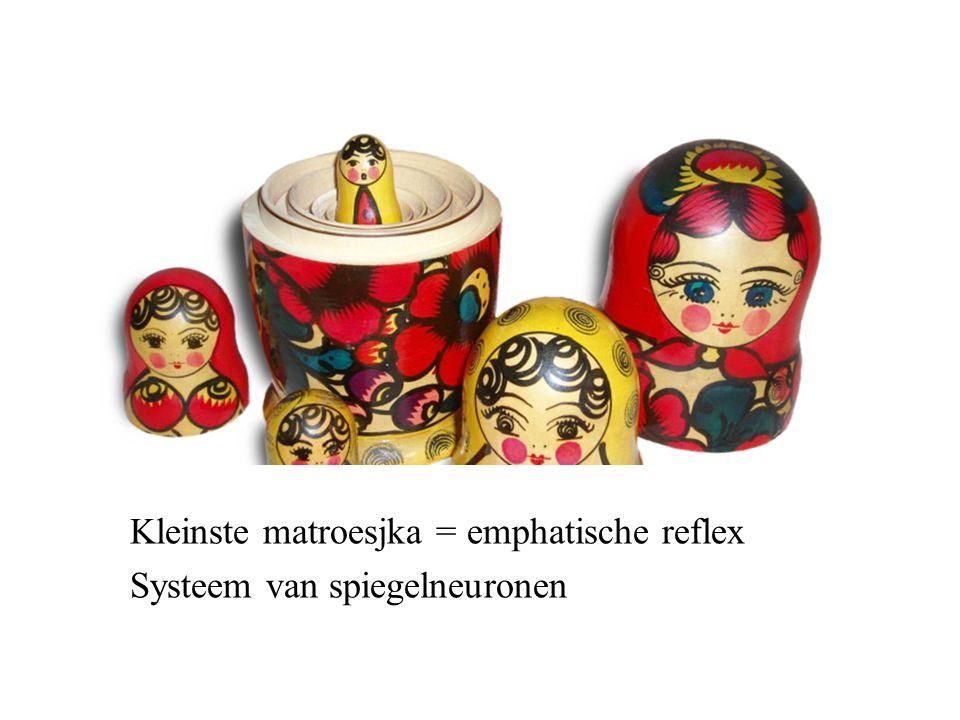 Kleinste matroesjka = emphatische reflex Systeem van spiegelneuronen