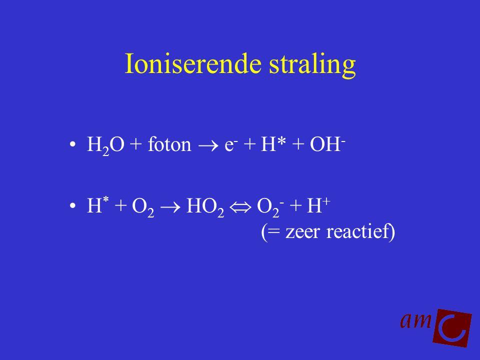 Ioniserende straling H 2 O + foton  e - + H* + OH - H * + O 2  HO 2  O 2 - + H + (= zeer reactief)