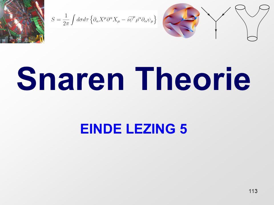 113 Snaren Theorie EINDE LEZING 5