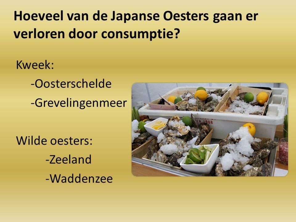 Hoeveel van de Japanse Oesters gaan er verloren door consumptie? Kweek: -Oosterschelde -Grevelingenmeer Wilde oesters: -Zeeland -Waddenzee