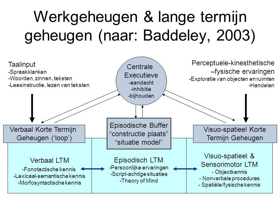 Episodisch LTM -Persoonlijke ervaringen -Script-achtige situaties -Theory of Mind Werkgeheugen & lange termijn geheugen (naar: Baddeley, 2003) Central