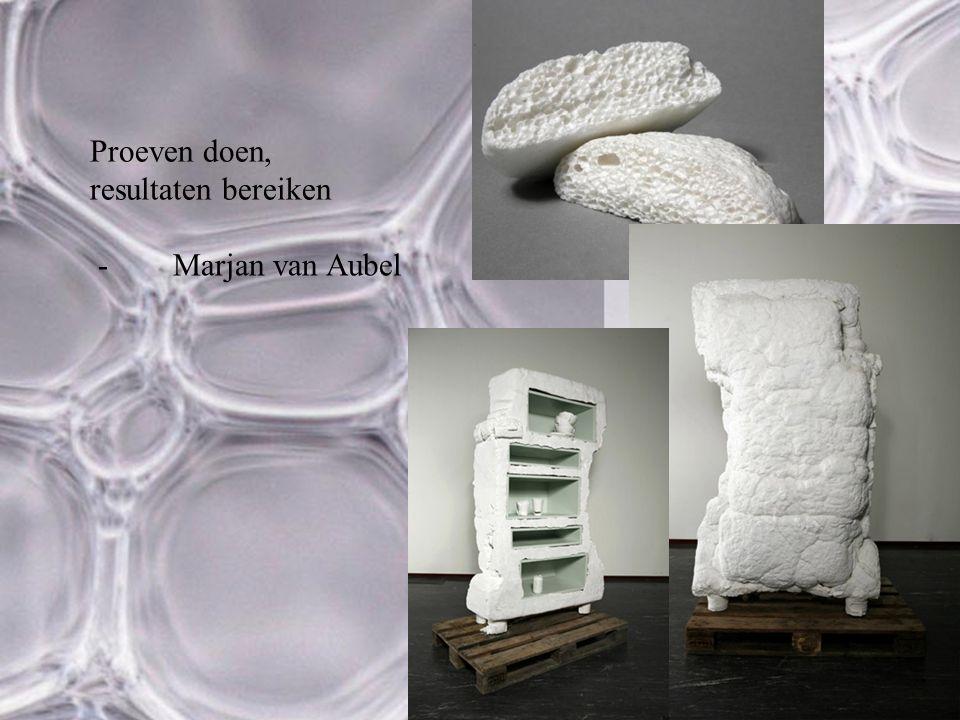 Proeven doen, resultaten bereiken -Marjan van Aubel