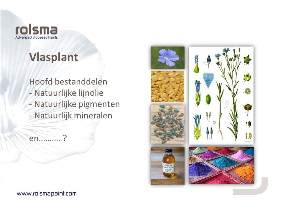 Vlasplant Hoofd bestanddelen - Natuurlijke lijnolie - Natuurlijke pigmenten - Natuurlijk mineralen en……….