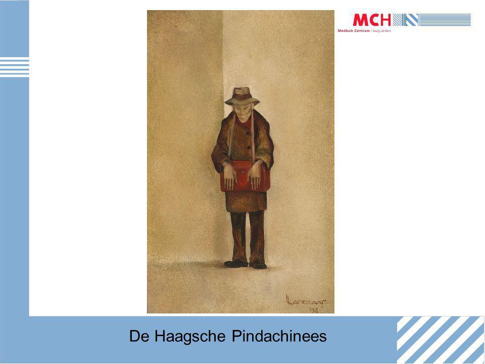 De Haagsche Pindachinees