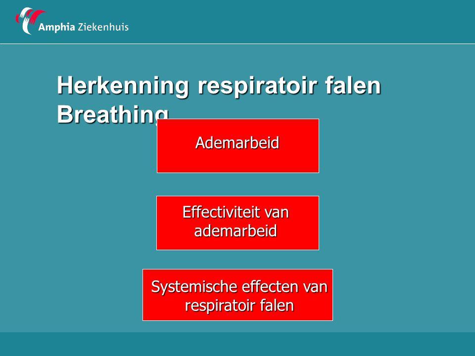 Ademarbeid  Ademfrequentie  Intrekkingen  Inspiratoire of expiratoire geluiden  Kreunen  Hulpademhalingsspieren  Neusvleugelen