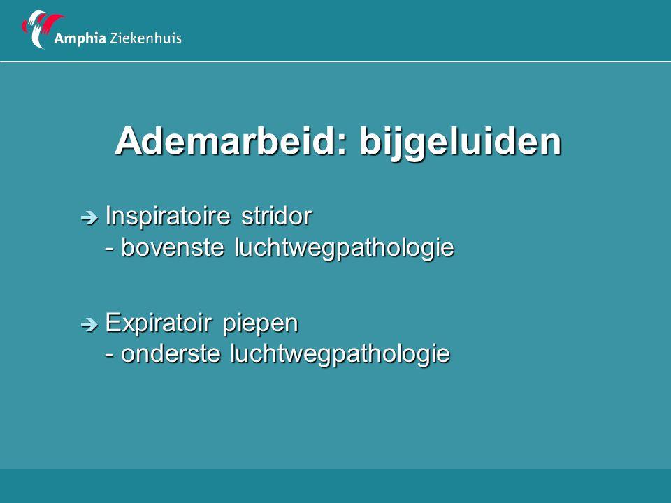 Meest voorkomende doodsoorzaken bij kinderen in Nederland in 2005 4-52 weken 1 - 4 jaar5-9 jaar PerinataalTrauma Neoplasma CongenitaalInfecties Trauma SIDSCongenitaal 10 – 14 jaar15 – 19 jaar Neoplasma Trauma Neoplasma Infecties