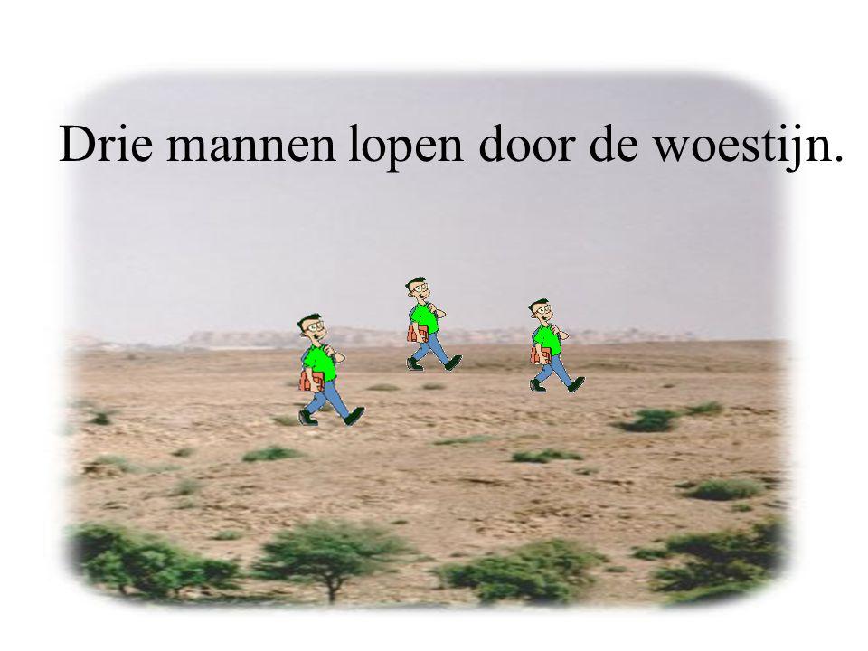 Drie mannen lopen door de woestijn.