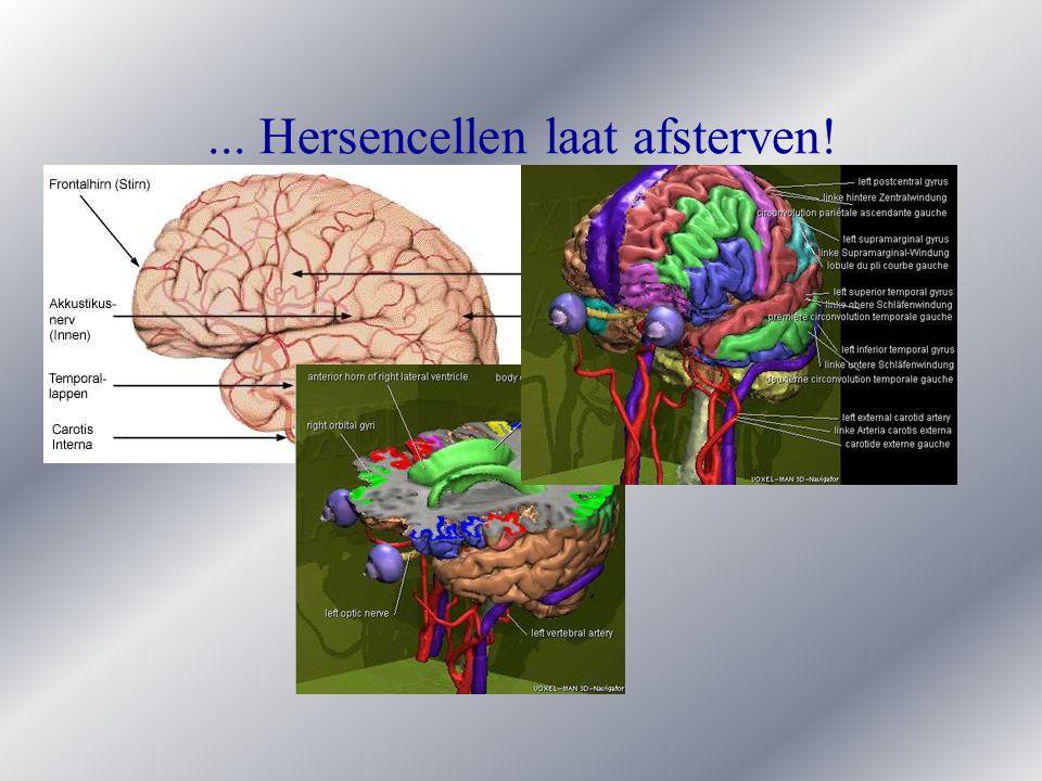 ... Hersencellen laat afsterven!