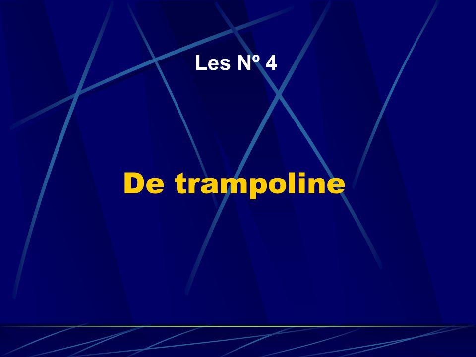 De trampoline Les Nº 4