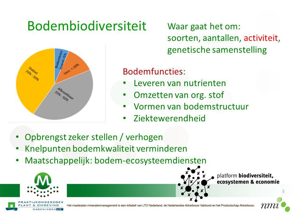 5 Bodembiodiversiteit Bodemfuncties: Leveren van nutrienten Omzetten van org. stof Vormen van bodemstructuur Ziektewerendheid Opbrengst zeker stellen