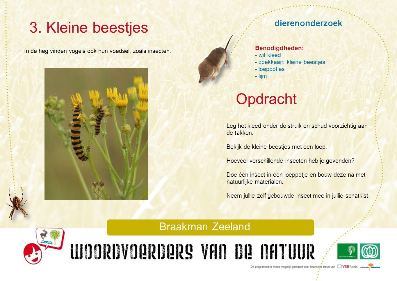 dierenonderzoek 3. Kleine beestjes Braakman Zeeland In de heg vinden vogels ook hun voedsel, zoals insecten. Leg het kleed onder de struik en schud vo
