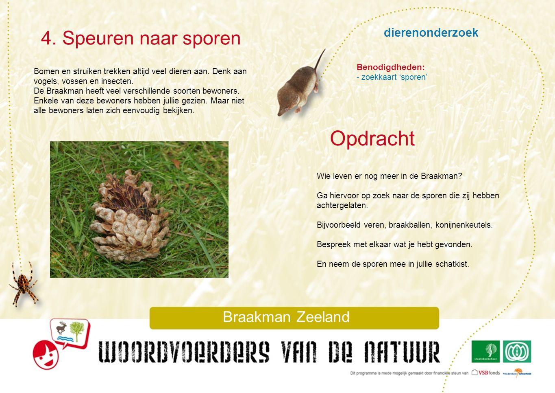 dierenonderzoek 4. Speuren naar sporen Braakman Zeeland Bomen en struiken trekken altijd veel dieren aan. Denk aan vogels, vossen en insecten. De Braa