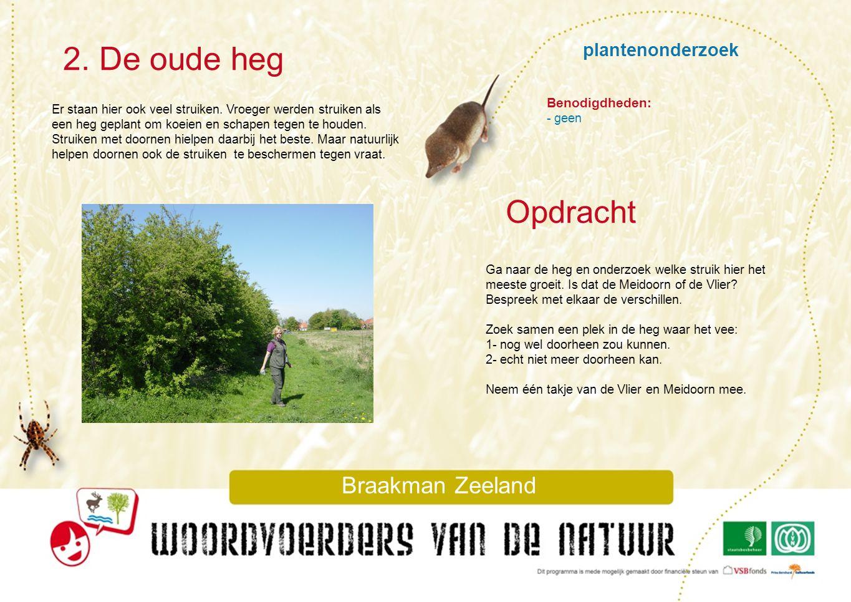 plantenonderzoek 2. De oude heg Braakman Zeeland Er staan hier ook veel struiken. Vroeger werden struiken als een heg geplant om koeien en schapen teg