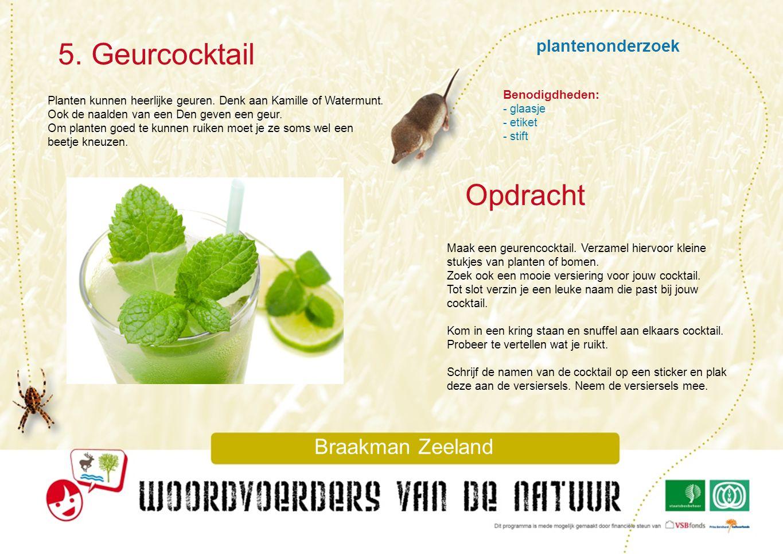 plantenonderzoek 5. Geurcocktail Braakman Zeeland Planten kunnen heerlijke geuren. Denk aan Kamille of Watermunt. Ook de naalden van een Den geven een