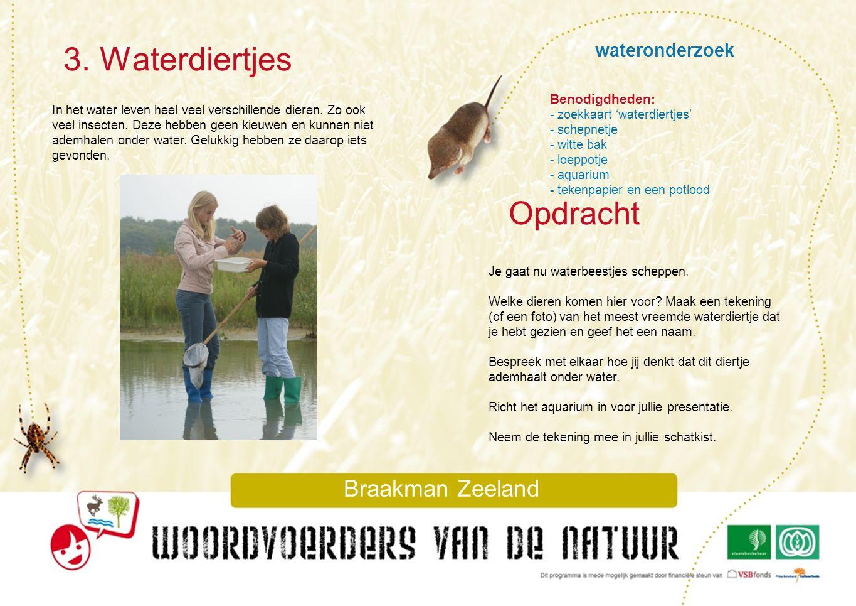 wateronderzoek 3. Waterdiertjes Braakman Zeeland In het water leven heel veel verschillende dieren. Zo ook veel insecten. Deze hebben geen kieuwen en