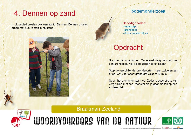 bodemonderzoek 4. Dennen op zand Braakman Zeeland In dit gebied groeien ook een aantal Dennen. Dennen groeien graag met hun voeten in het zand. Ga naa