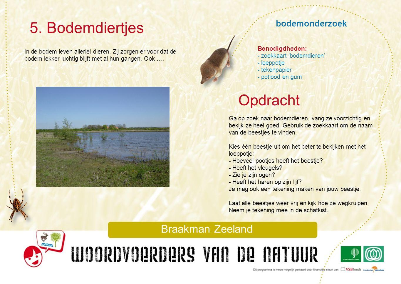 bodemonderzoek 5. Bodemdiertjes Braakman Zeeland In de bodem leven allerlei dieren. Zij zorgen er voor dat de bodem lekker luchtig blijft met al hun g