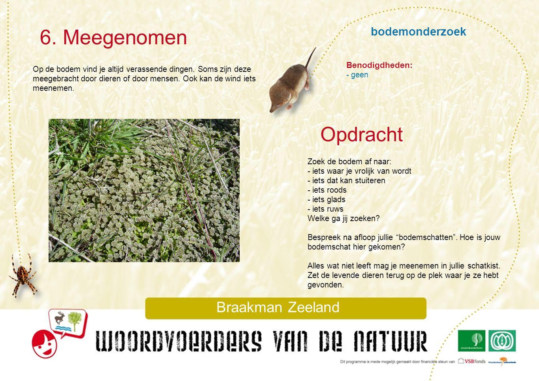 bodemonderzoek 6. Meegenomen Braakman Zeeland Op de bodem vind je altijd verassende dingen. Soms zijn deze meegebracht door dieren of door mensen. Ook