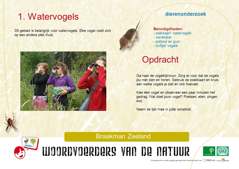 dierenonderzoek 1. Watervogels Braakman Zeeland Dit gebied is belangrijk voor watervogels. Elke vogel voelt zich op een andere plek thuis. Ga naar de
