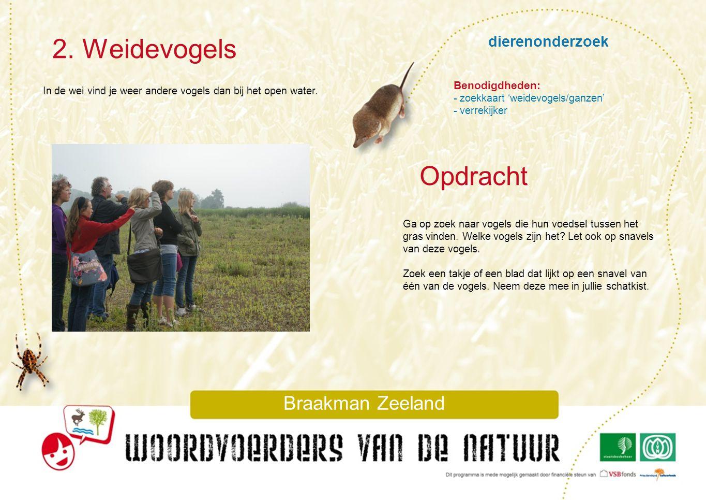 dierenonderzoek 2. Weidevogels Braakman Zeeland In de wei vind je weer andere vogels dan bij het open water. Ga op zoek naar vogels die hun voedsel tu