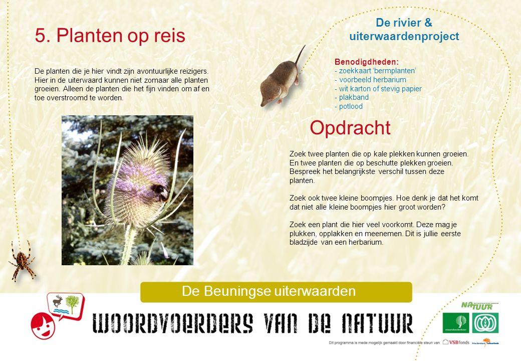 De rivier & uiterwaardenproject 5. Planten op reis De Beuningse uiterwaarden De planten die je hier vindt zijn avontuurlijke reizigers. Hier in de uit