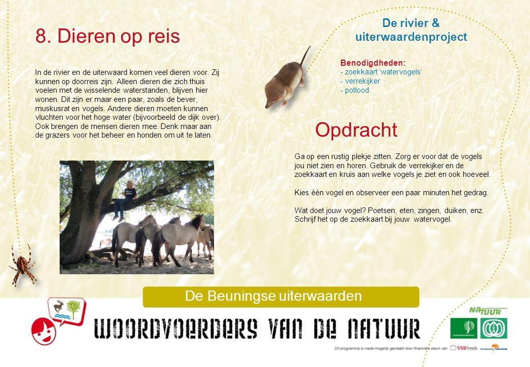 De rivier & uiterwaardenproject 8. Dieren op reis De Beuningse uiterwaarden In de rivier en de uiterwaard komen veel dieren voor. Zij kunnen op doorre