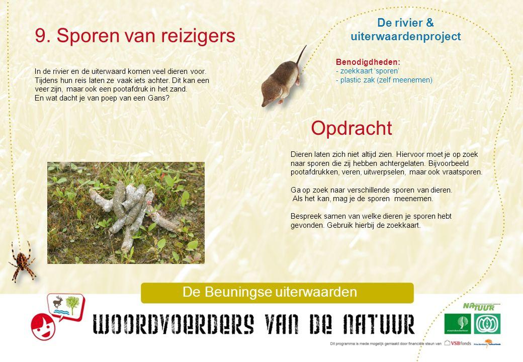 De rivier & uiterwaardenproject 9. Sporen van reizigers De Beuningse uiterwaarden In de rivier en de uiterwaard komen veel dieren voor. Tijdens hun re