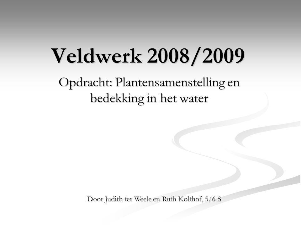 Veldwerk 2008/2009 Opdracht: Plantensamenstelling en bedekking in het water Door Judith ter Weele en Ruth Kolthof, 5/6 S